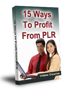 15 Ways To Profit From PLR